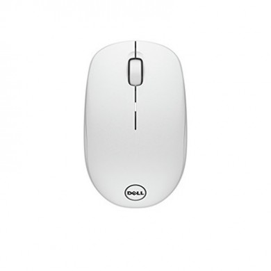 Dell Wireless Mouse-WM126, White (570-AAQG)