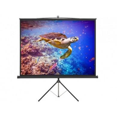 """Lumi Tripod Screen """"PSDB80"""" 145x145cm, 80"""", format 1:1, 9kg"""